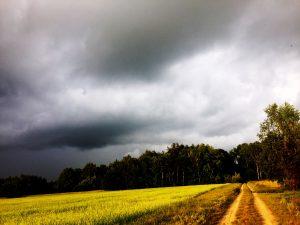 pierwszy deszcz