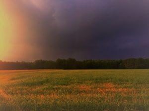 przed deszczem